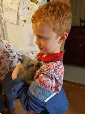 Boris the rabbit